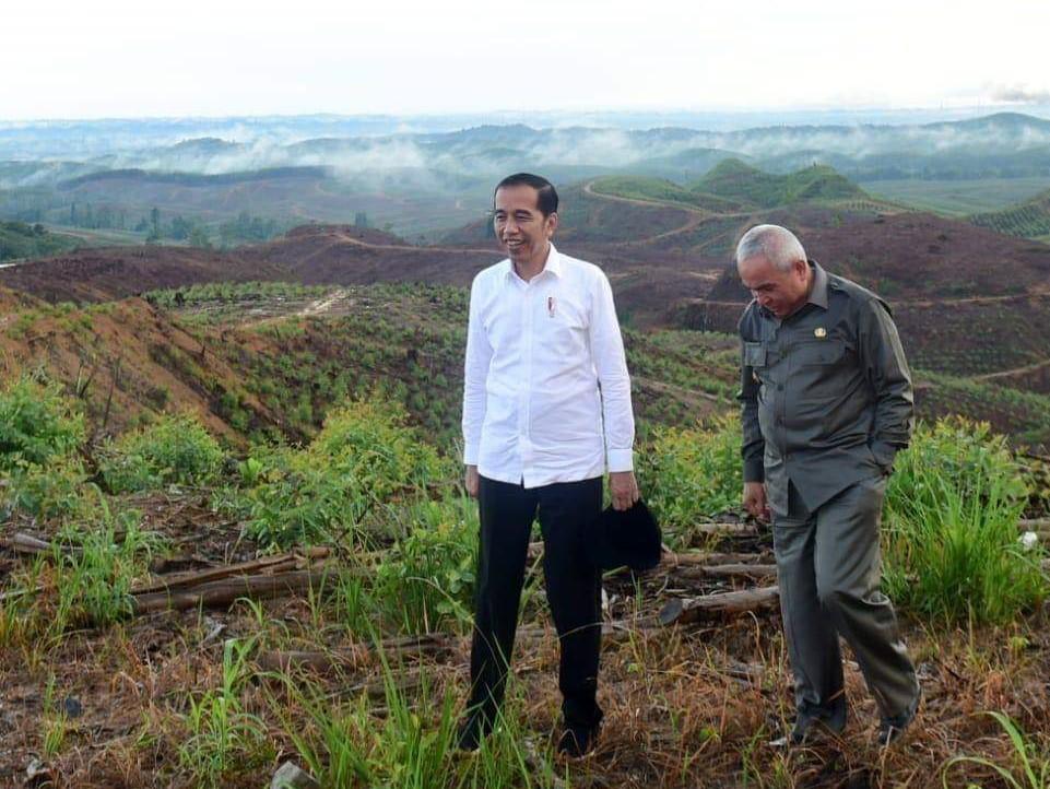Tinjau Lokasi Ibu Kota Baru, Jokowi Ingin Membuat Kebun Bibit 100 Hektare
