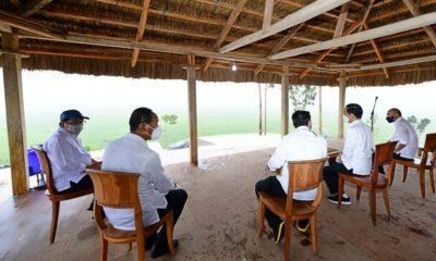 Jokowi: Lumbung Pangan di Sumba Tengah, NTT Akan Diperluas Hingga 10.000 Hektare